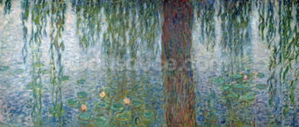 Waterlilies: Morning with Weeping Willows, detail of the left section, 1915-26 (oil on canvas) (see also 162348-9) mural wallpaper