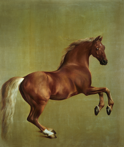 Whistlejacket, 1762 mural wallpaper