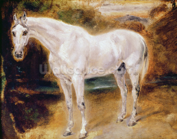 White Horse (oil on canvas) wall mural