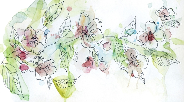 Apple Blossoms wall mural