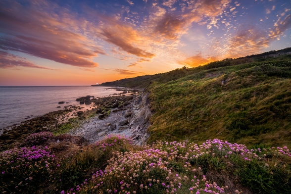 Sunset flowers with a lighthouse shining in the distance wall mural