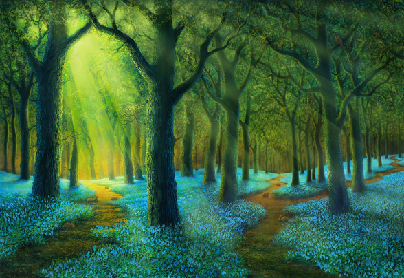 Bluebell Wood wallpaper mural