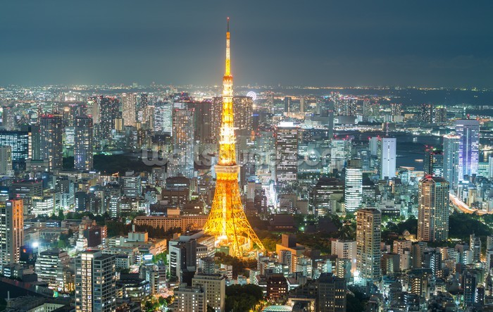 Tokyo skyline at night wallpaper mural wallsauce eu - Skyline night wallpaper ...