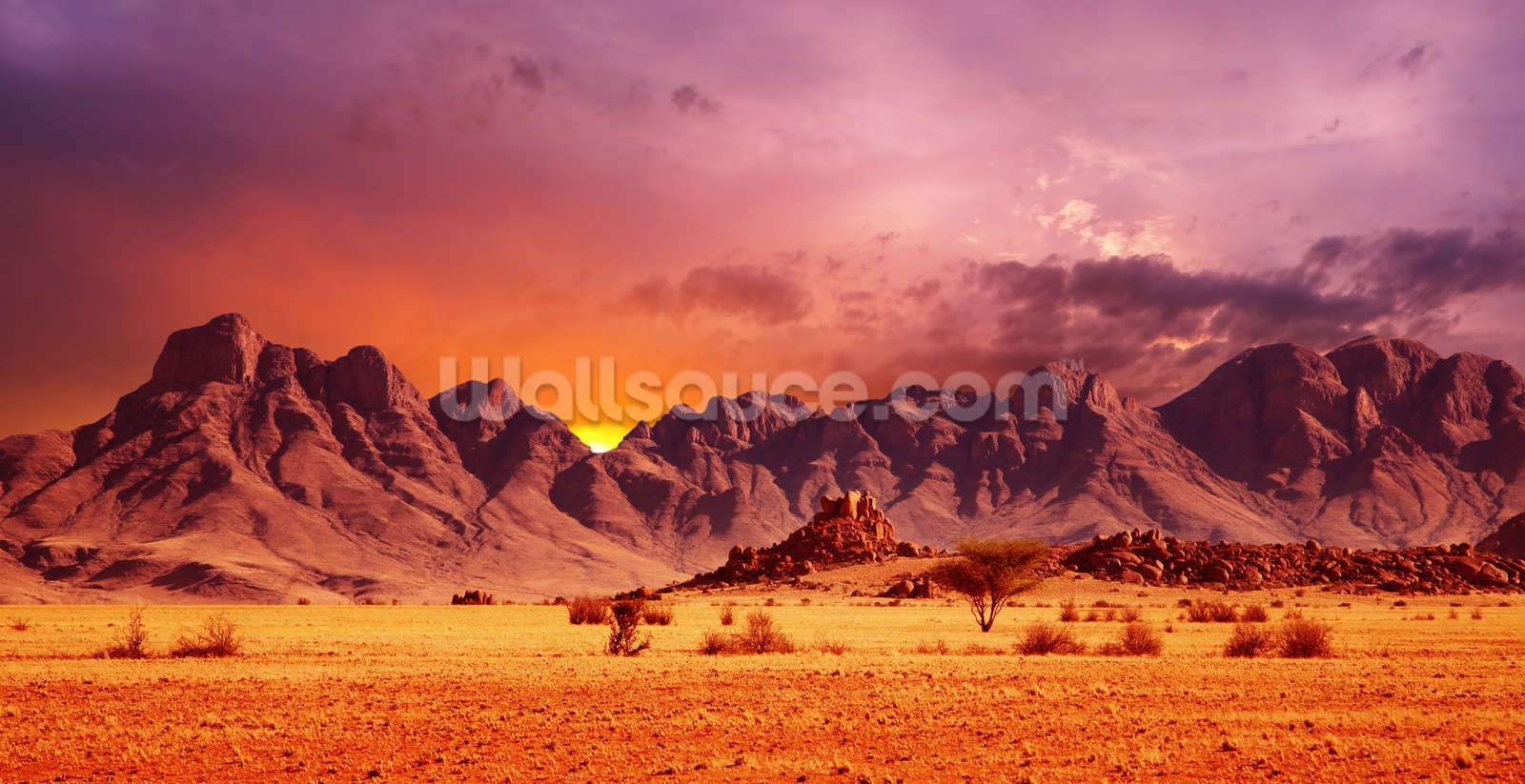Namib desert sunset wallpaper wall mural wallsauce usa for Desert mural wallpaper