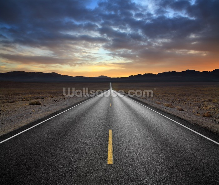 Desert highway wallpaper wall mural wallsauce usa for Desert mural wallpaper