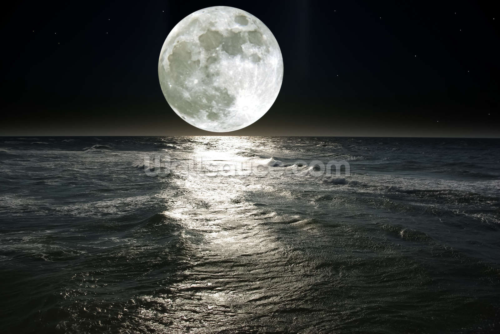 moon wall mural moon wallpaper wallsauce usa aloha moon wall mural contemporary wallpaper by