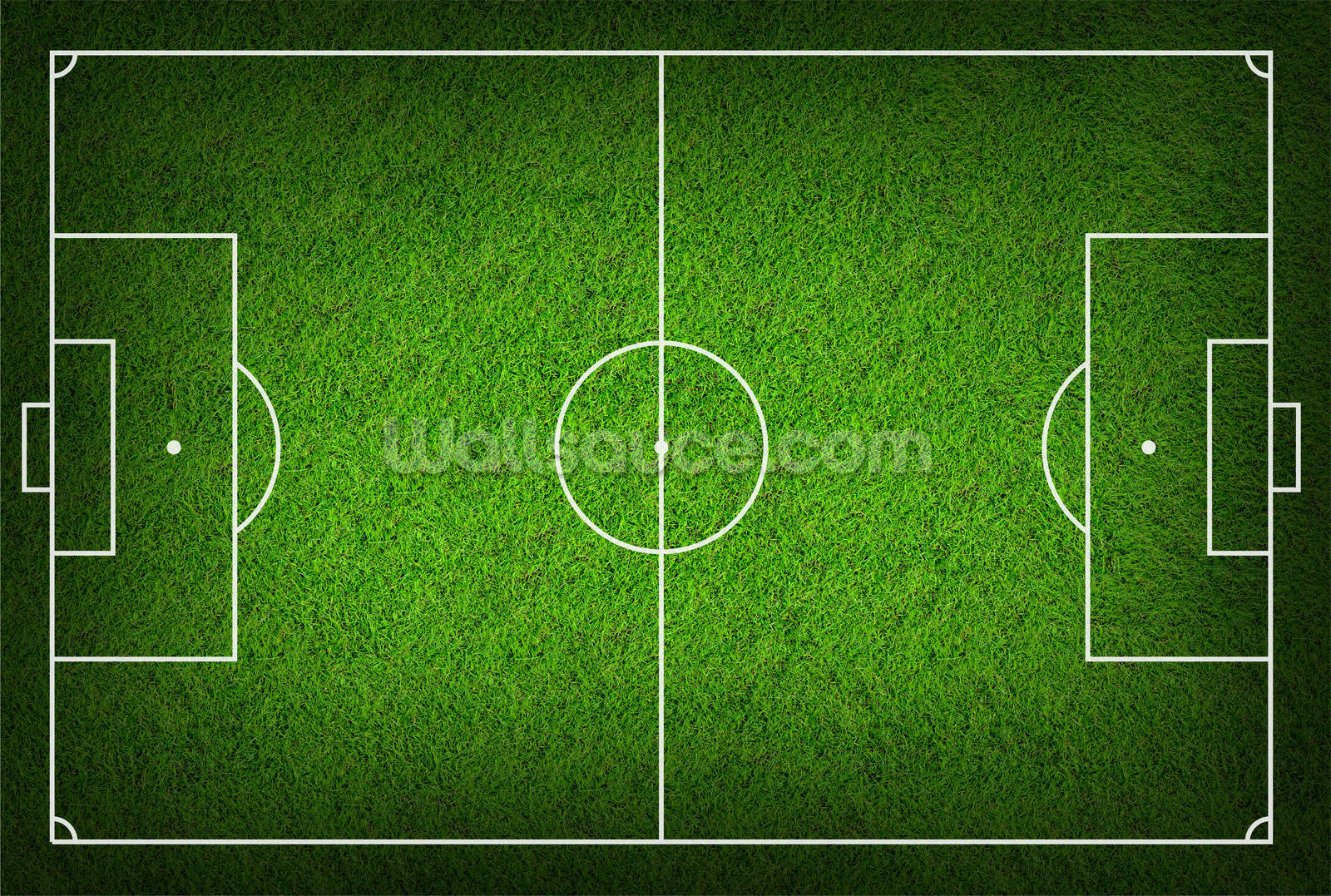 Football Pitch Wall Mural Wallpaper