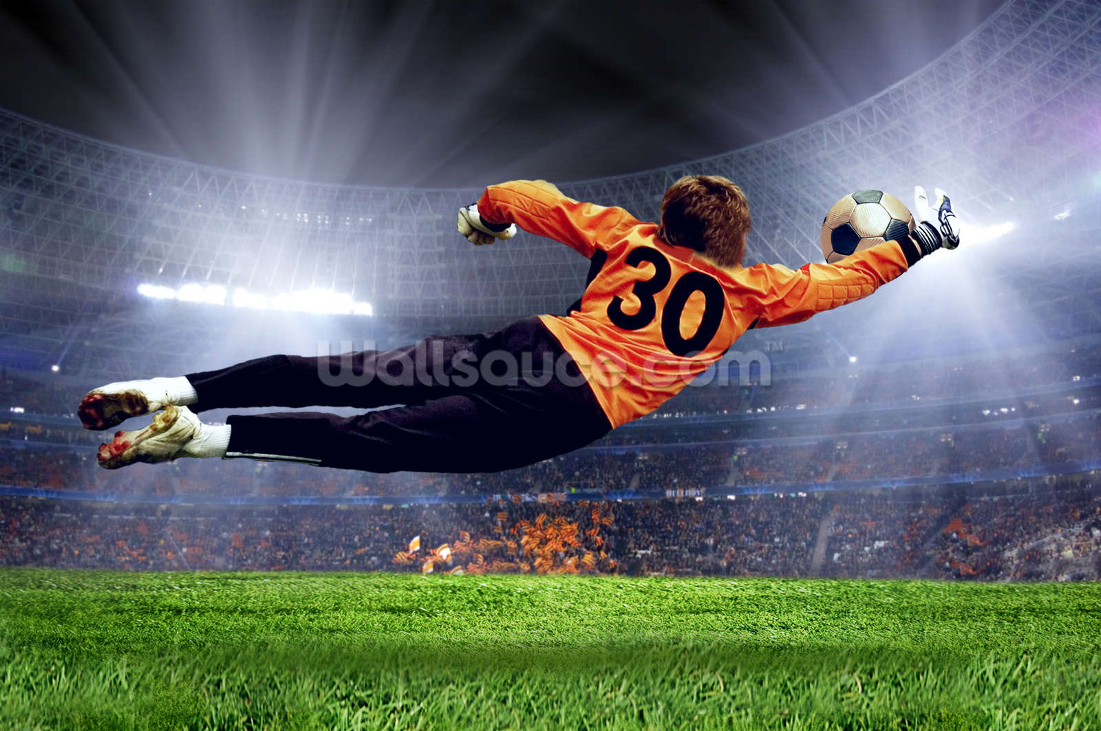 Football Goalkeeper Wall Mural Photo Wallpaper Part 83