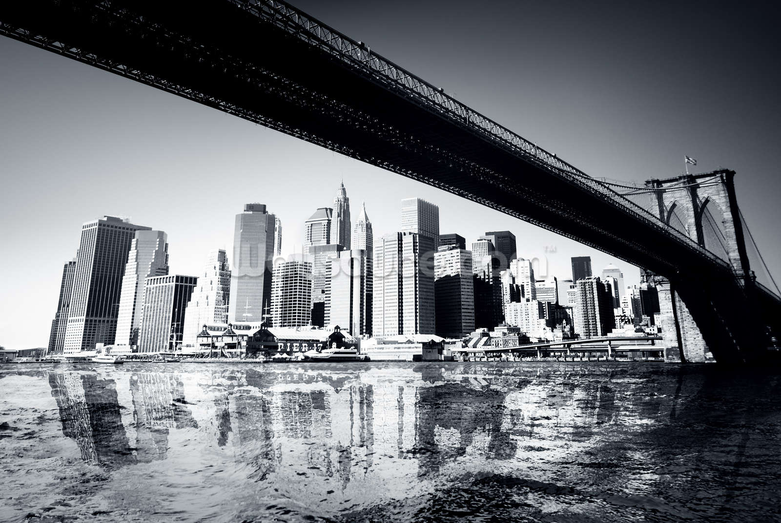 New york black white wallpaper wall mural wallsauce for Black and white new york mural wallpaper