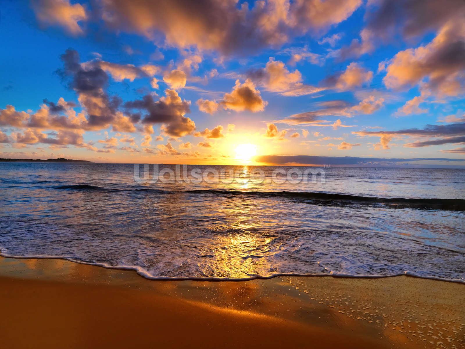 Horizon sunset wallpaper wall mural wallsauce usa for Beach sunset wall mural