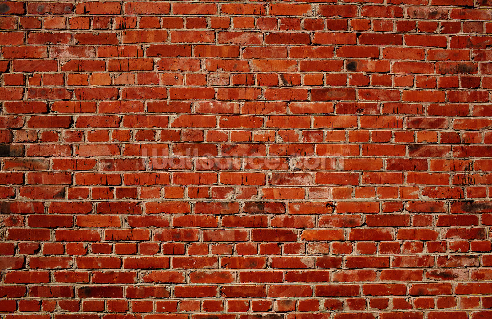Red brick wall wallpaper wall mural wallsauce for Distressed brick wall mural