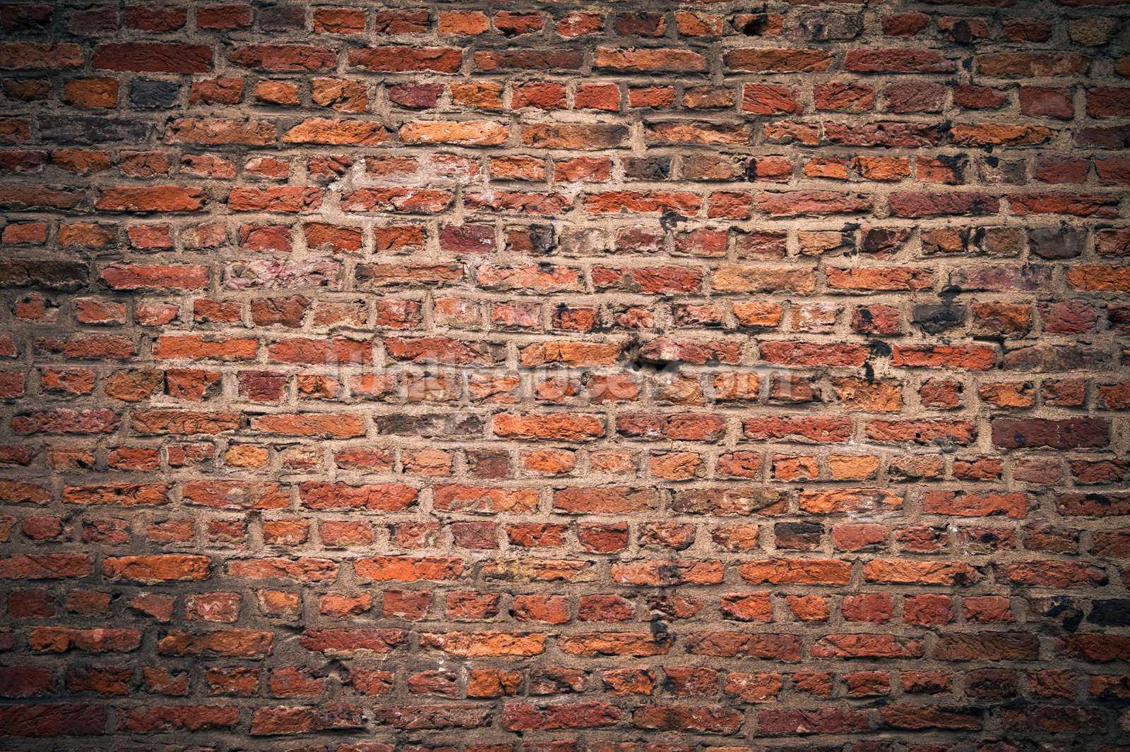 Brick wall wallpaper wall mural wallsauce for Wall to wall wallpaper