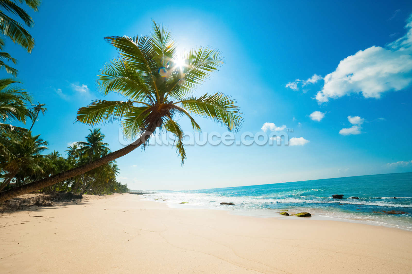 Tropical Beach Mural Wallpaper