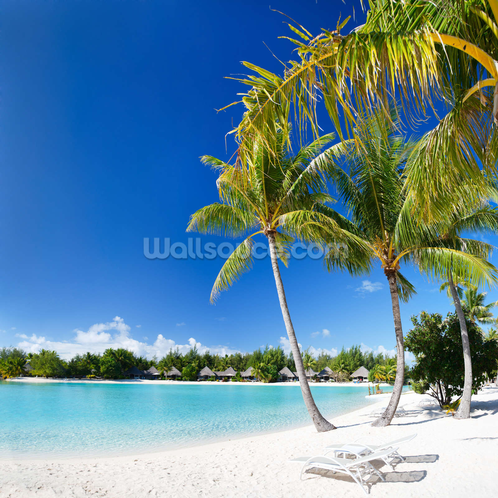 Bora Bora Beach Wall Mural Photo Wallpaper Part 58