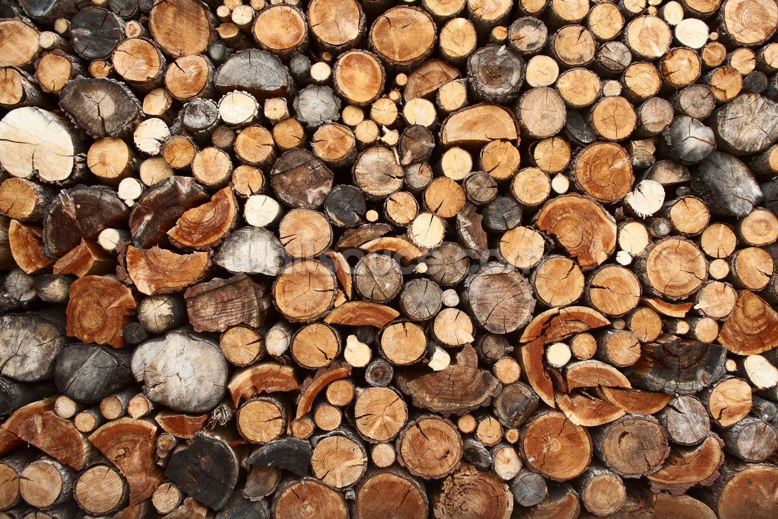 Wood Wall Mural pile of fire wood wallpaper wall mural | wallsauce usa