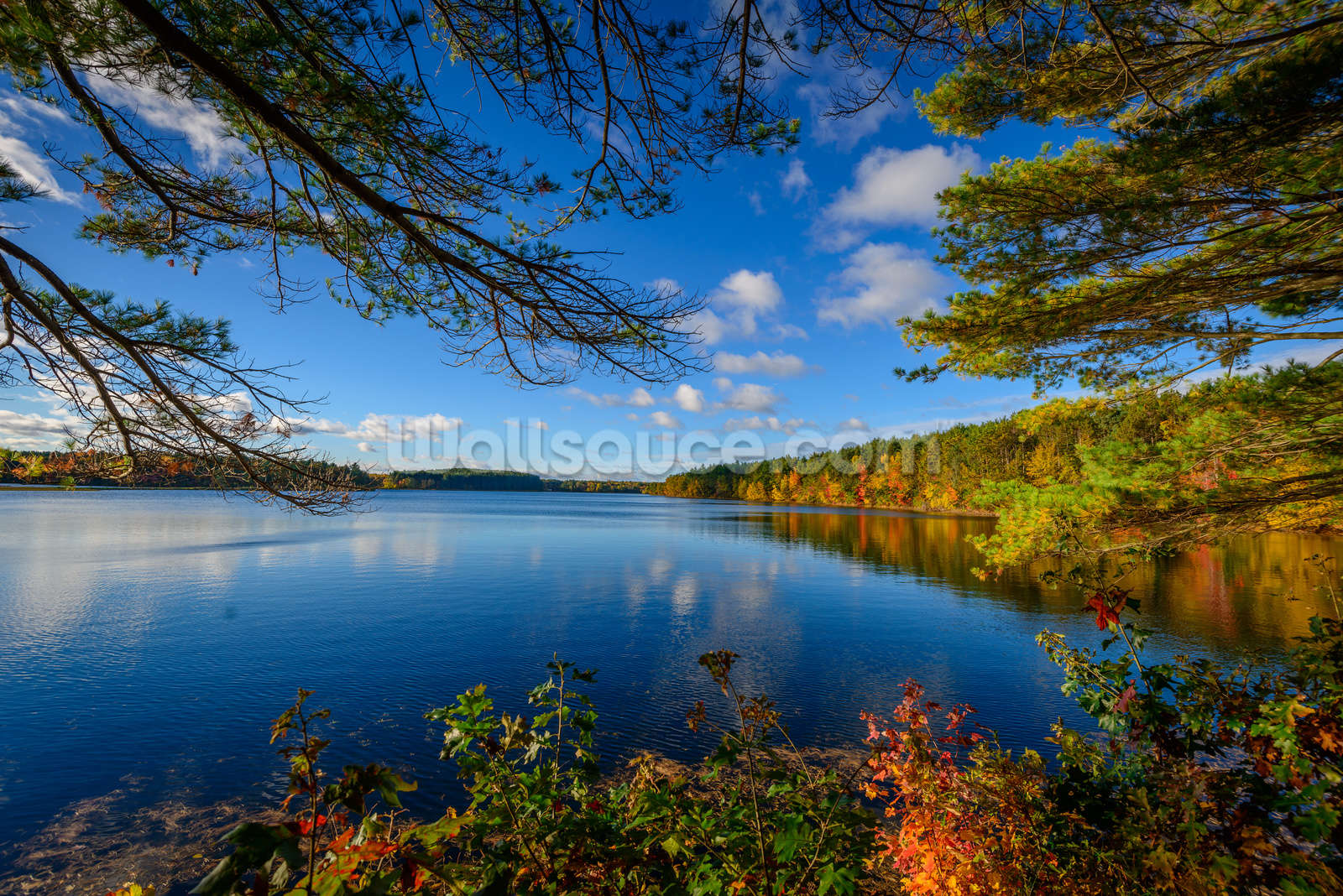 landscape wallpaper wall murals wallsauce usa forest lake in autumn wall mural wallpaper
