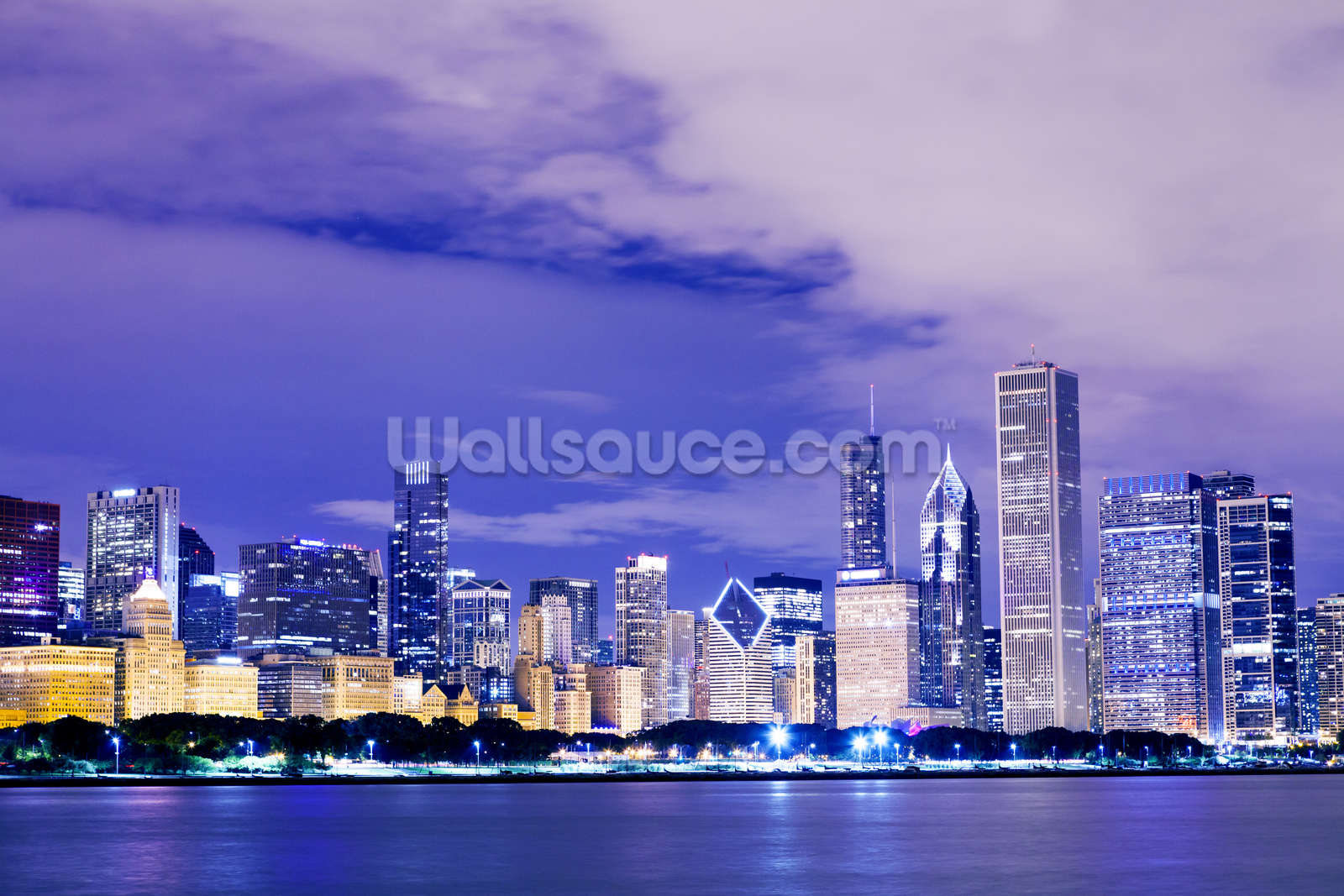 Chicago Downtown Wall Mural Photo Wallpaper