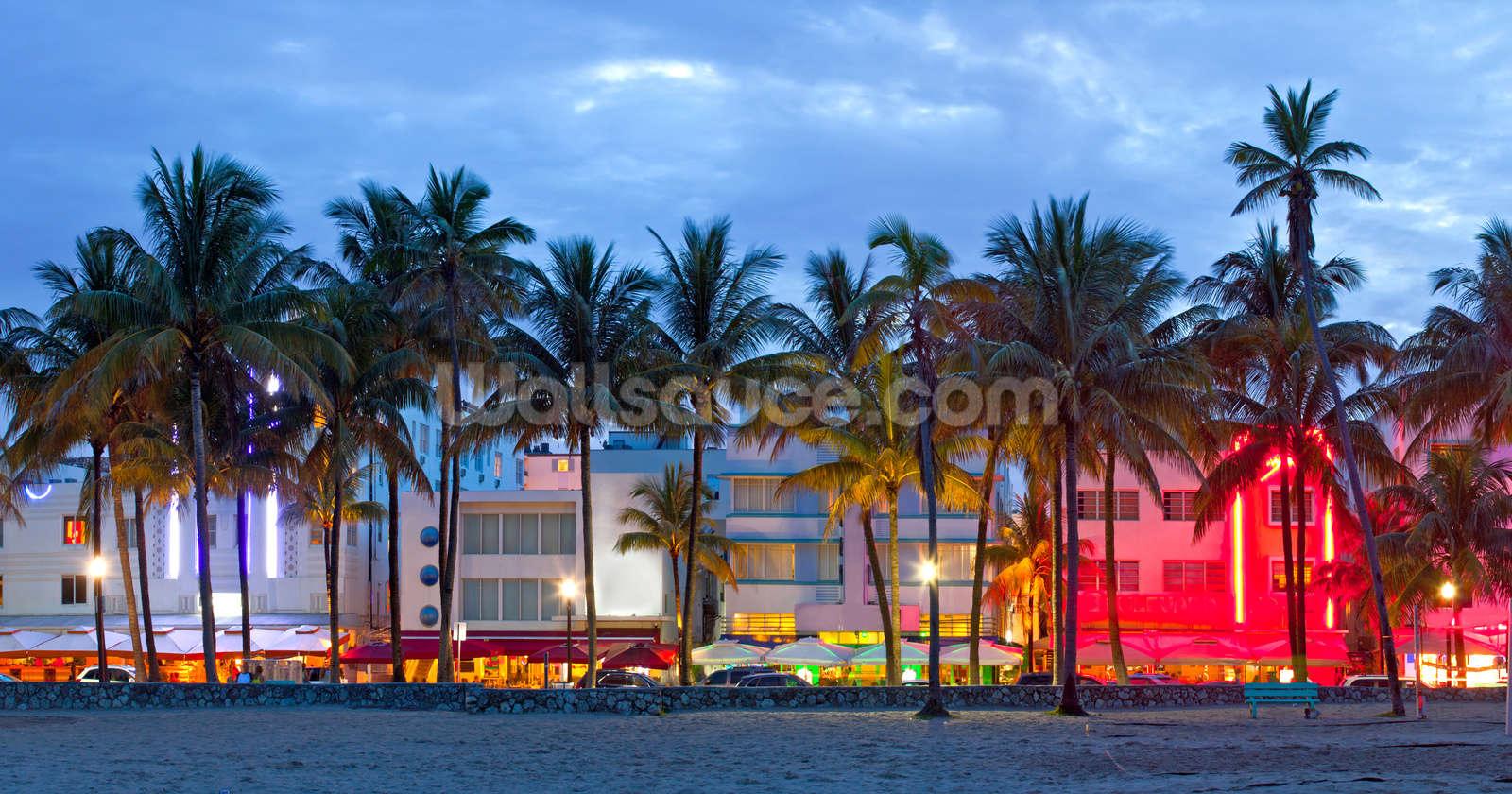 Miami Beach Palms Sunset Mural Wallpaper