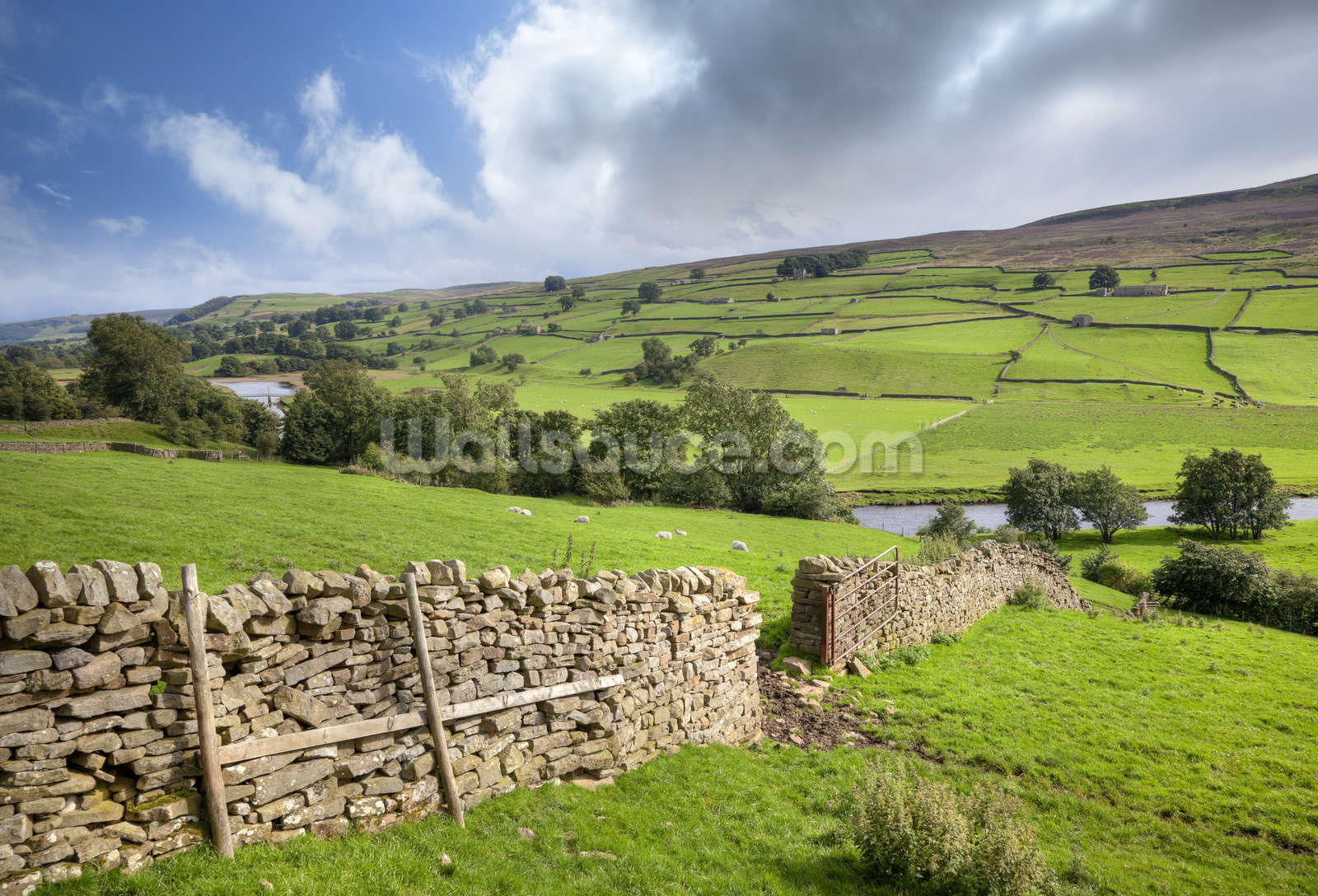 Swaledale yorkshire wallpaper wall mural wallsauce uk for Countryside wallpaper for walls