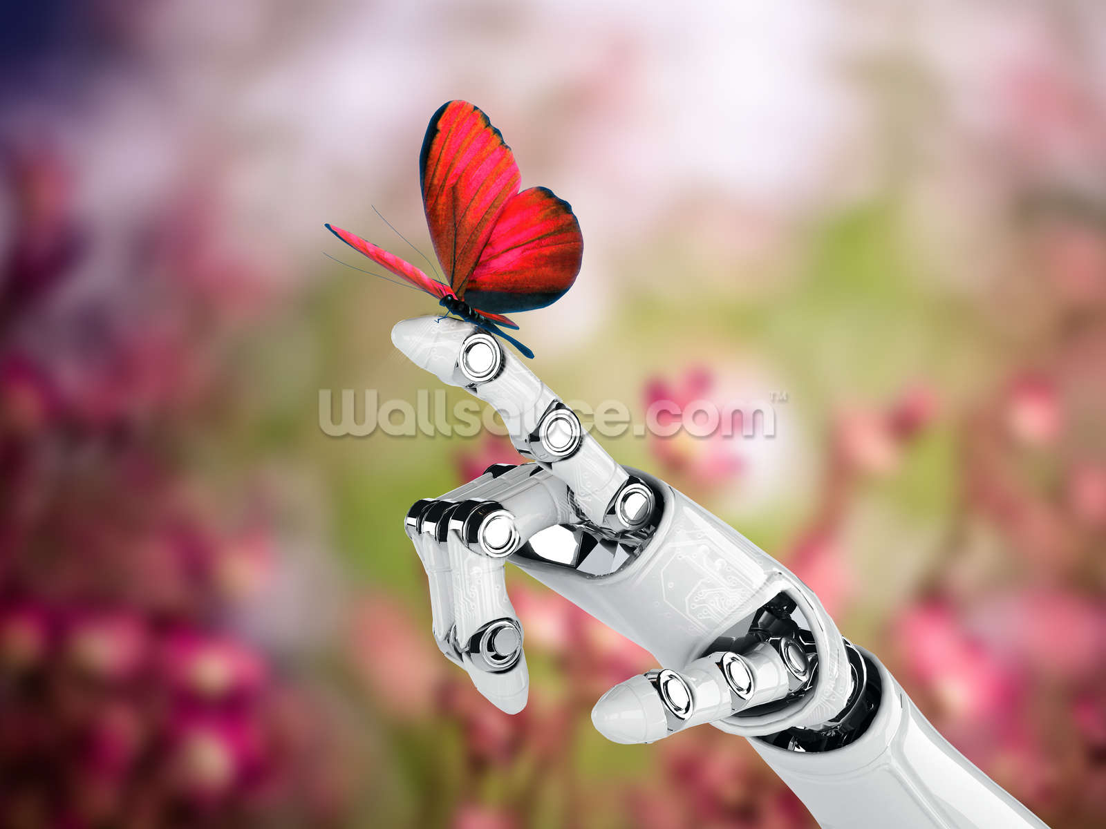 Best Wallpaper Butterfly Hand - 57973365robot-hand-butterfly  You Should Have_32758.jpg