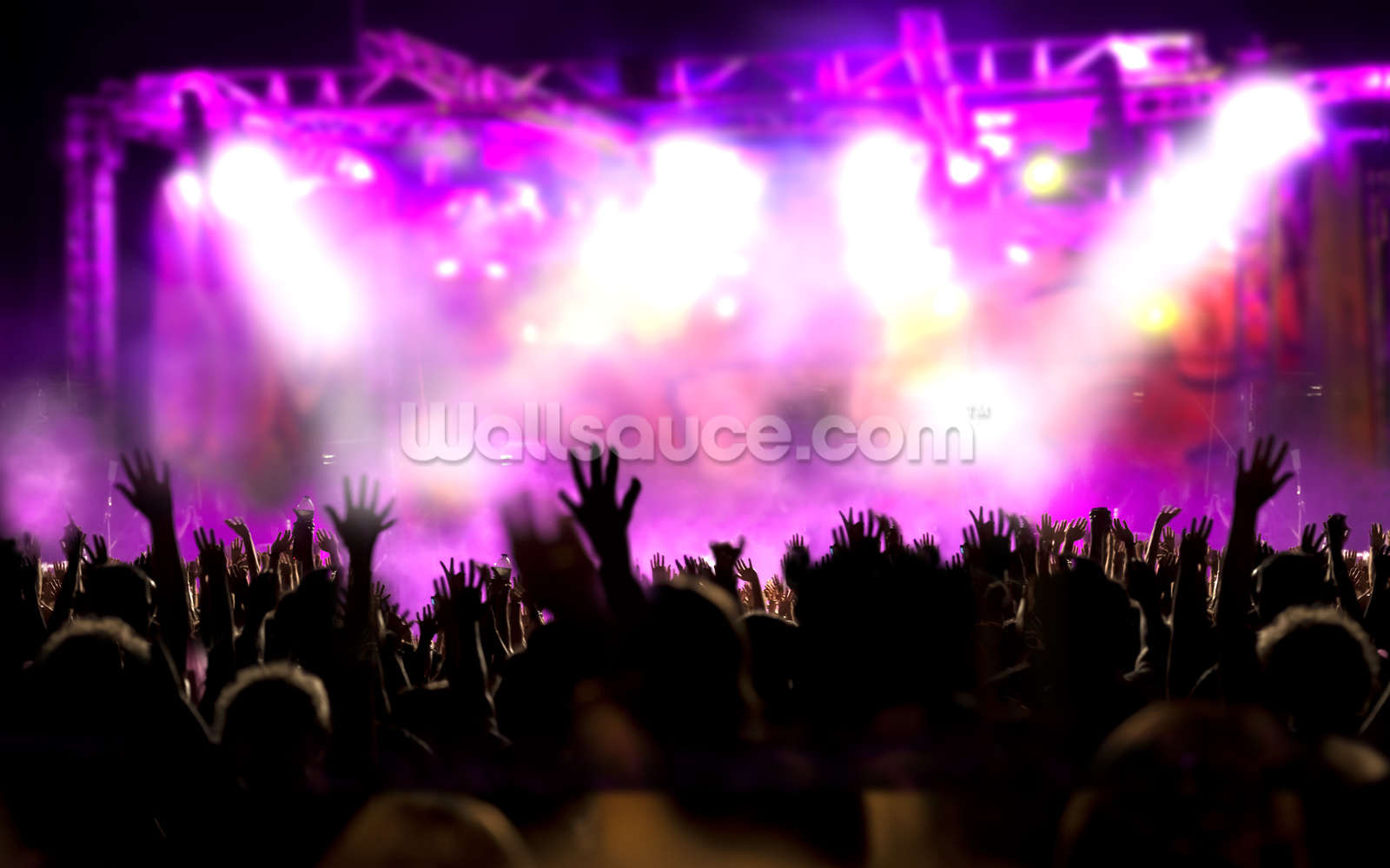 Music concert wallpaper wall mural wallsauce usa for Concerts at the mural