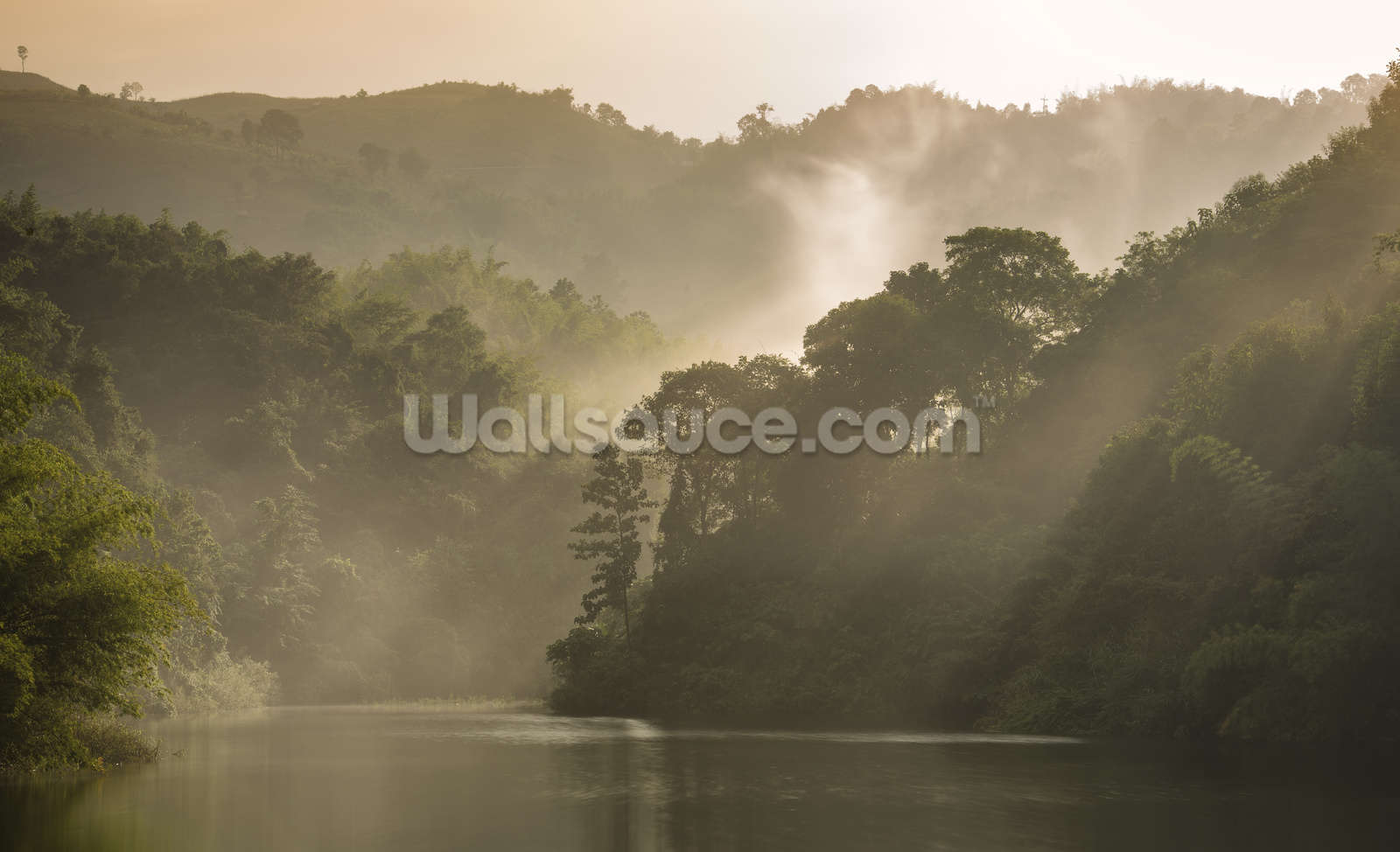 misty forest wallpaper wall mural wallsauce usa misty forest wall mural photo wallpaper