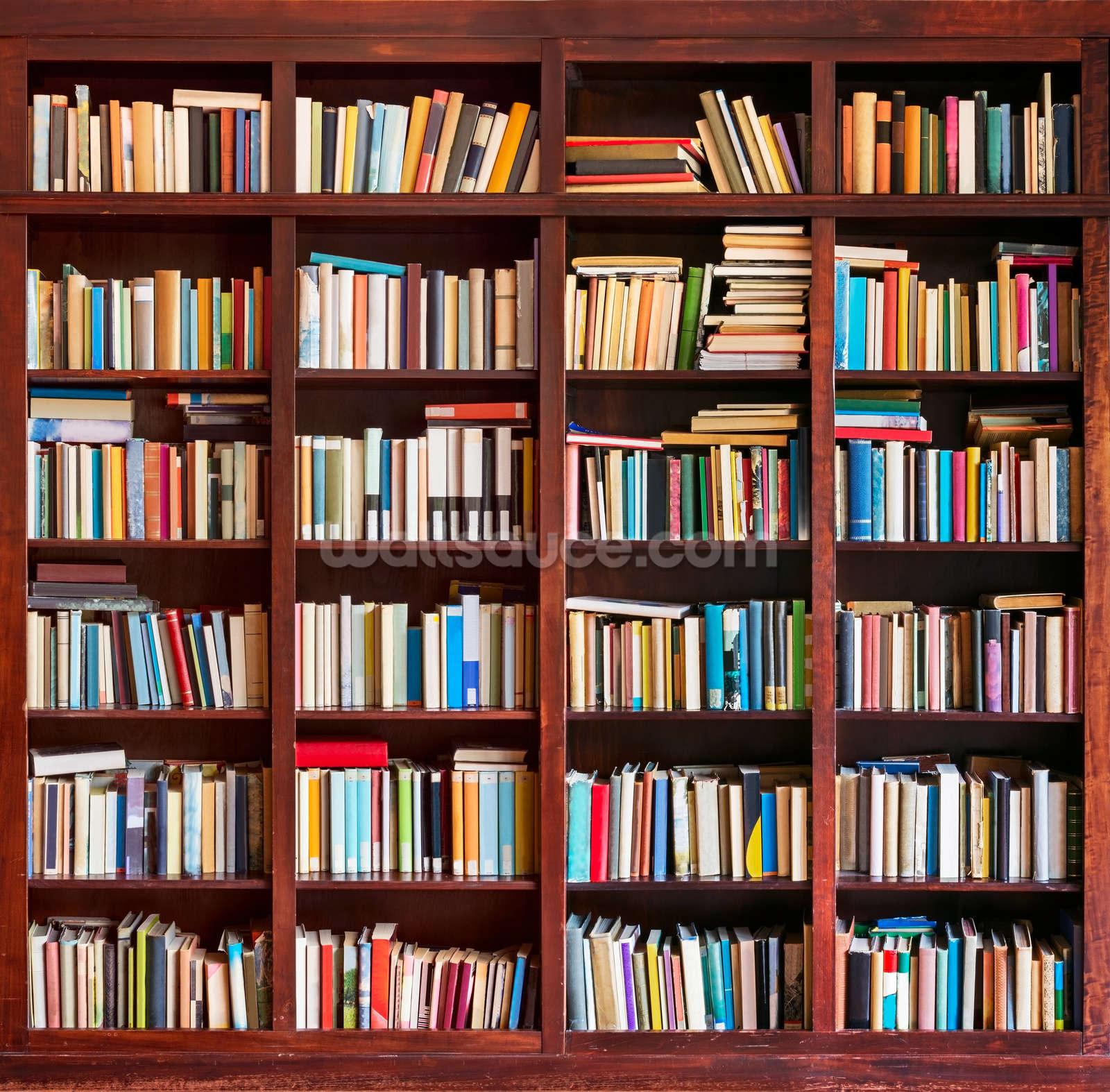 Bookcase wallpaper wall mural wallsauce usa for Bookshelf wallpaper mural
