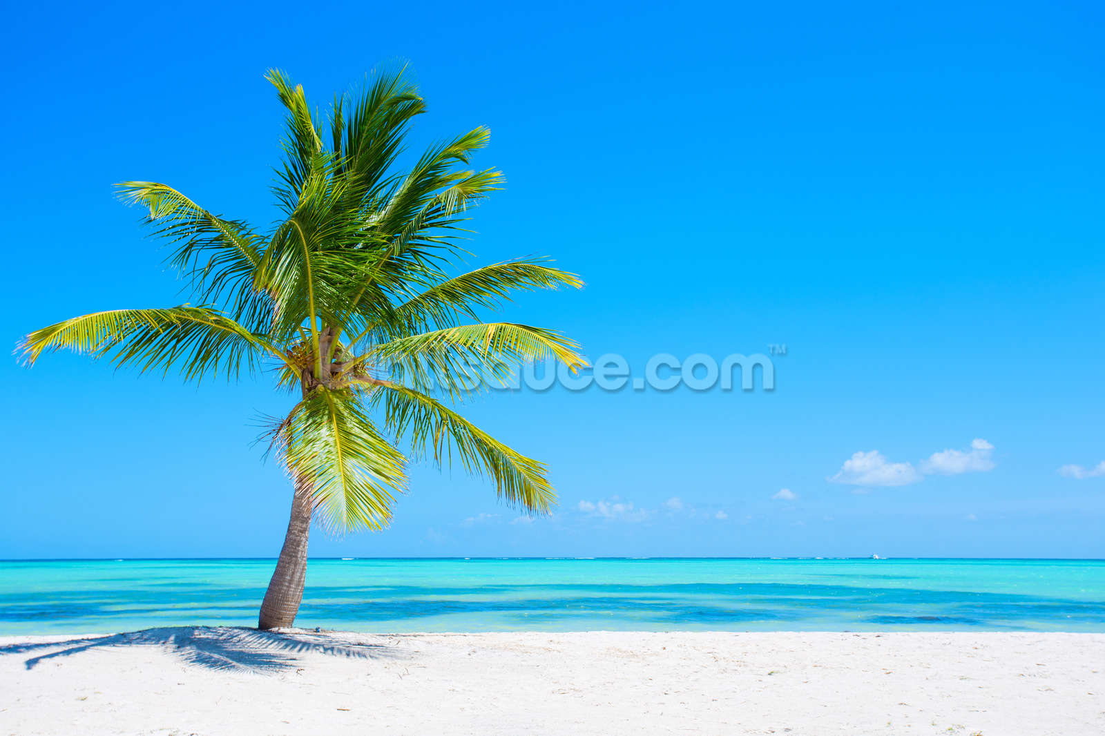 Beach Heaven Wall Mural Photo Wallpaper Part 58