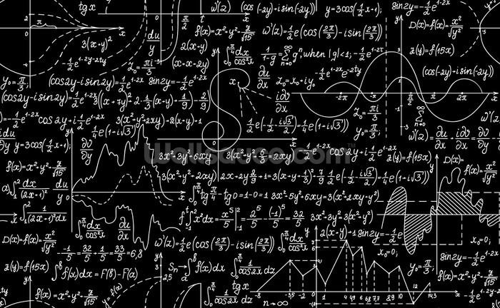 Plots Formulas And Calculations Wallpaper Mural
