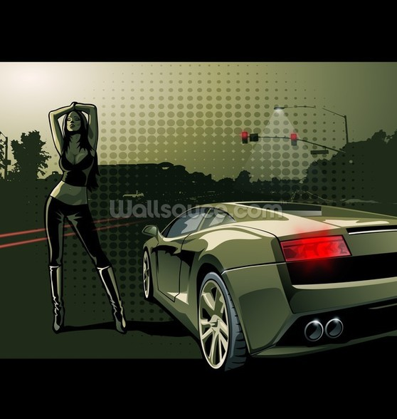 Sports Car Illustration wall mural