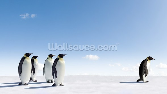Emperor Penguin Rejection wall mural