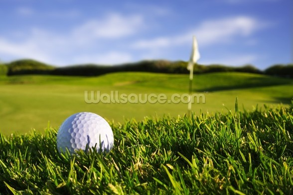 Golf Ball mural wallpaper