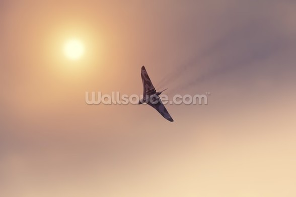 Vulcan Bomber Towards the Sun wall mural