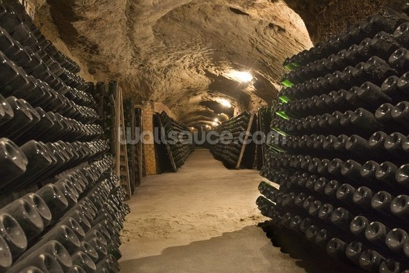 Wine Cellar Cave wall mural