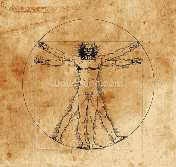 Vitruvian Man Wallpaper | 2017 - 2018 Best Cars Reviews