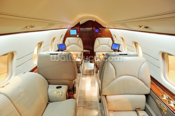 Interior of Luxury Jet wall mural