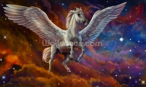 Pegasus and Starry Sky wall mural