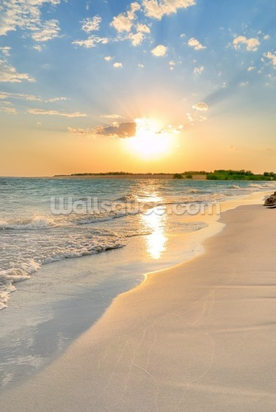 Tranquil Beach Sunset wall mural