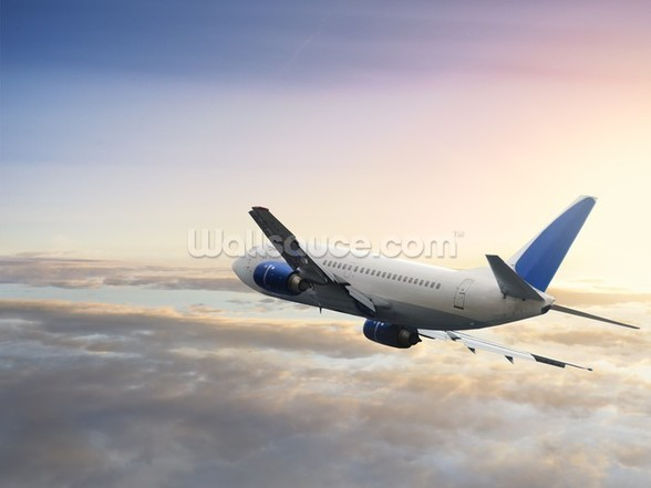 Jet Airliner wall mural