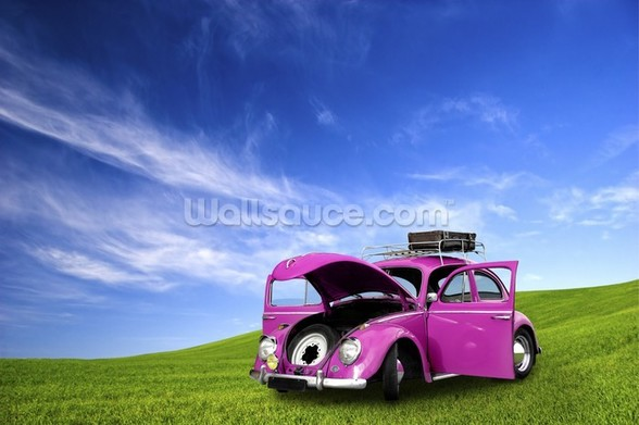 Beetle Car wall mural