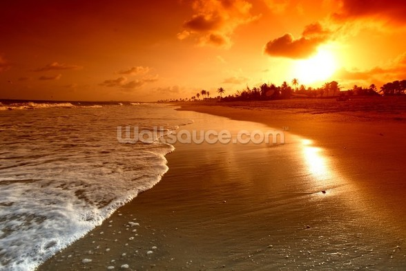 Ocean Sunrise wall mural
