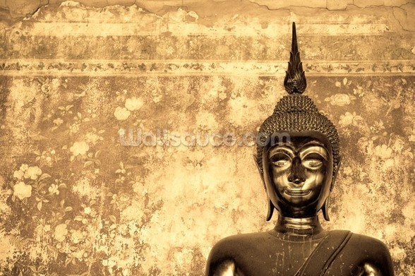 Buddha on Background wall mural