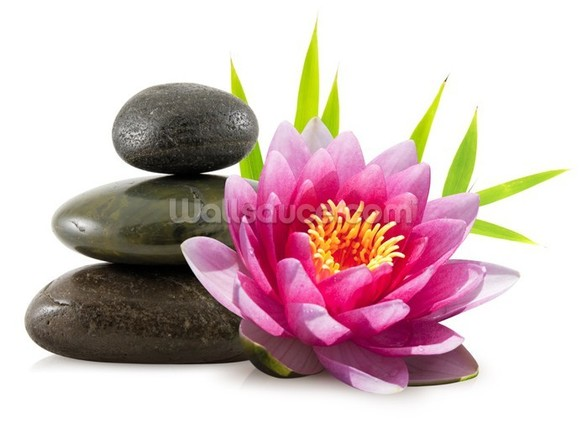 Lotus Flower - Zen wall mural