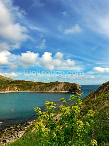 Lulworth Cove in Dorset England mural wallpaper