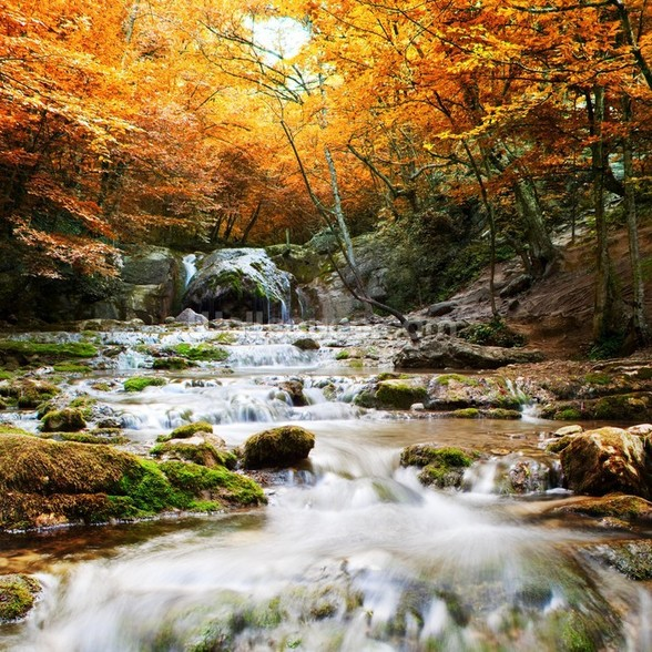 Natural Autumn Waterfall wallpaper mural