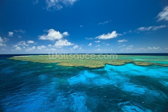 Clam Gardens, Great Barrier Reef wall mural