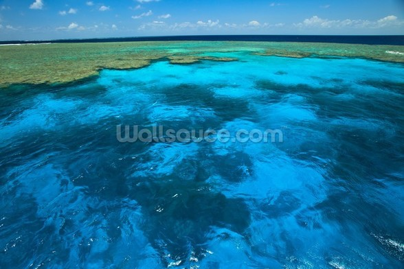 Great Barrier Reef Park wall mural