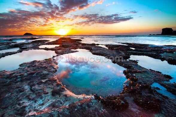 Maori Bay Sunset mural wallpaper