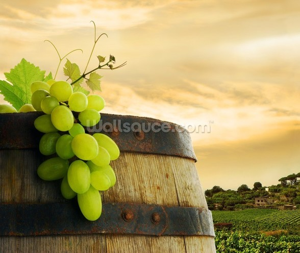 Wine Barrel and Grapes wall mural