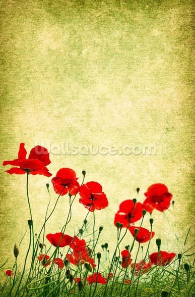 Poppies Illustration wall mural